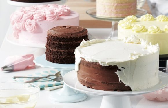Get the Right Cake Making Tool from Online Market